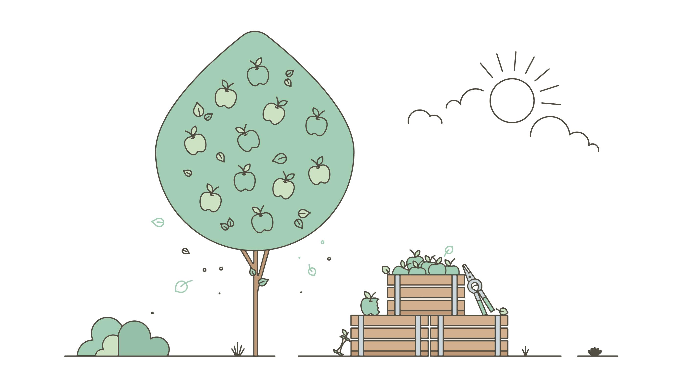 Vector de árbol de manzana gratis - Descargue Gráficos y Vectores Gratis