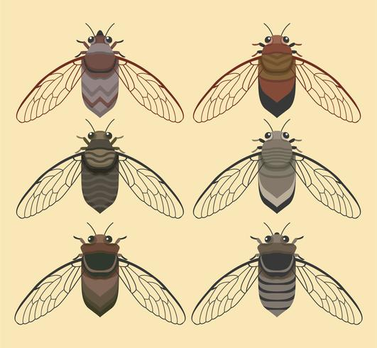 Cicada Bug With Yellow Background Vector Collection