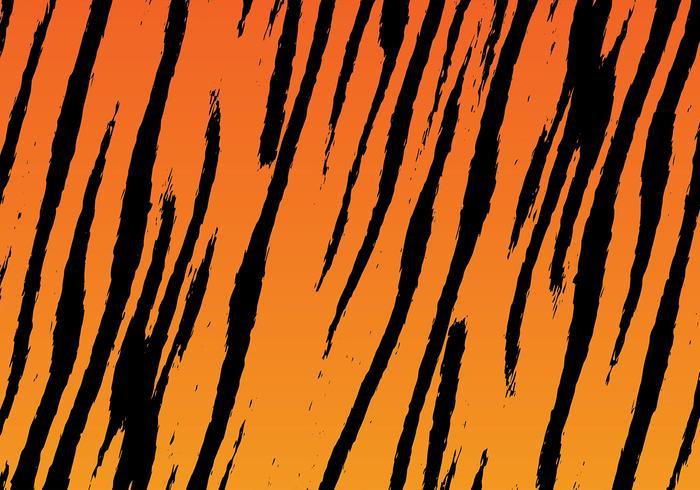Tiger Stripe Bakgrund Vector