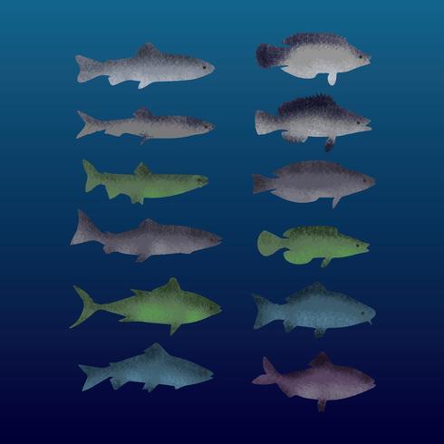 Free Textured Fish Vector