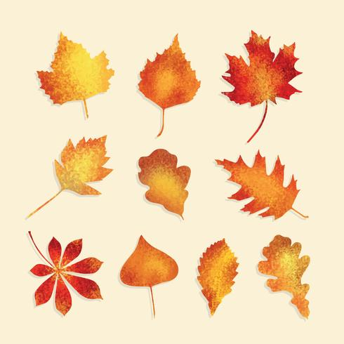 Free Textured Autumn Leaves Vector