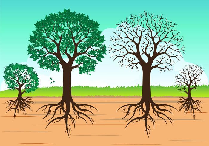 Vektor Träd med rötter isolerade på vitt