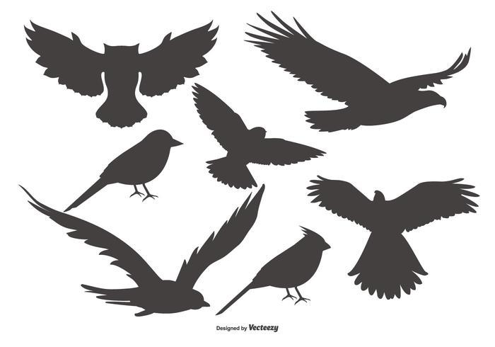 Coleção de formas de pássaro vetorial