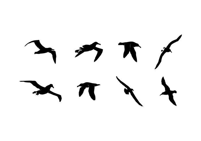 Flying Albatross Silhouette Free Vector