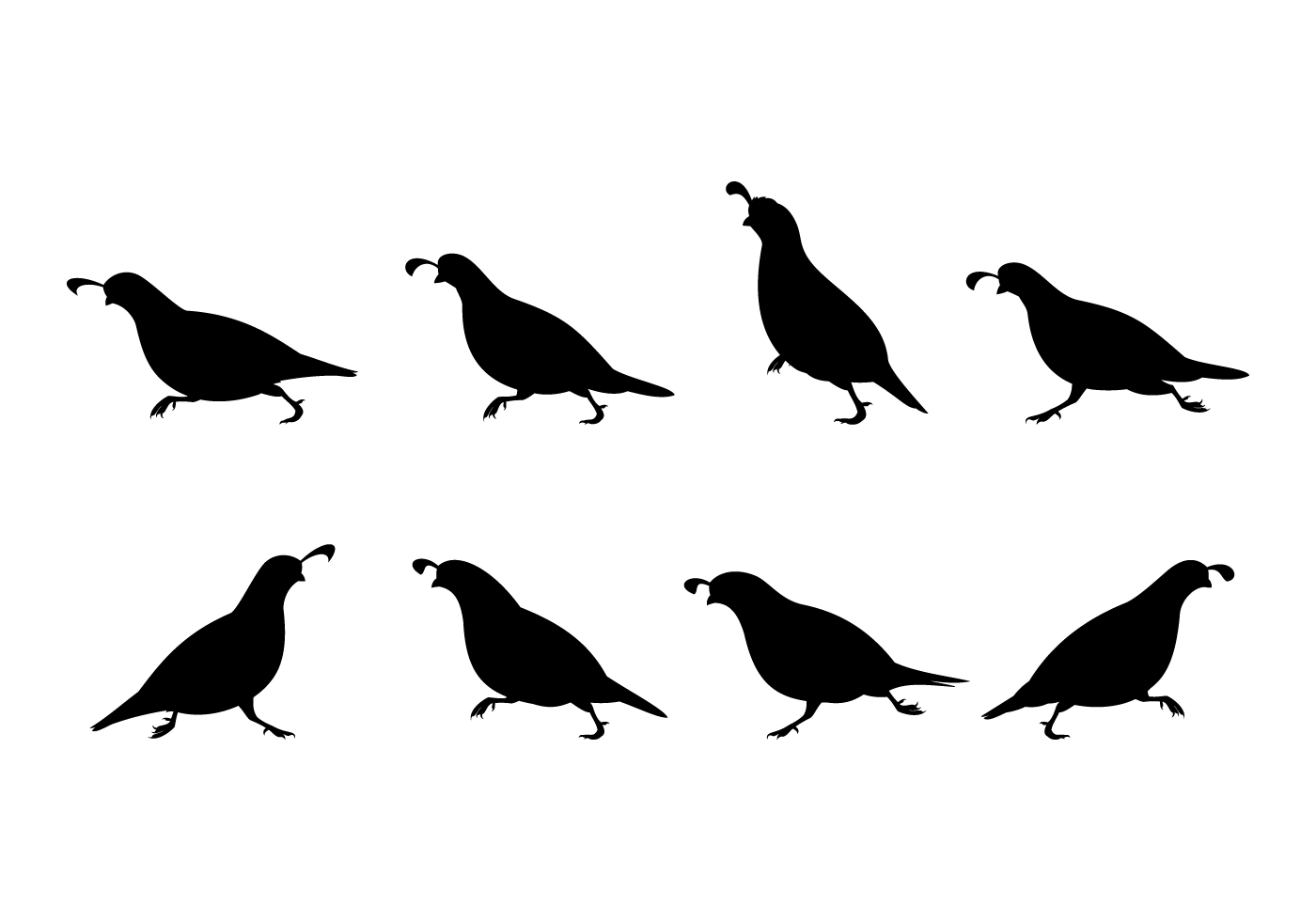 172527 Running Quail Silhouette Free Vector also Saturday All American Boots additionally Pineapple Black And White further 2 besides . on turkey food