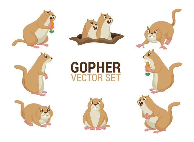Gopher Cartoons Vektor