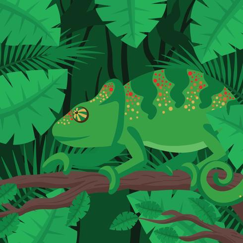 Kameleon Med Skogsbakgrund