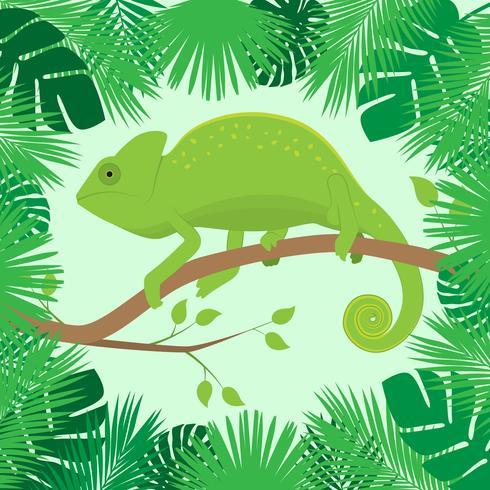 Chameleon On A Branch Of Tropical Leaves Frame