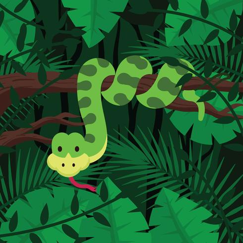 Anaconda On Forest Background