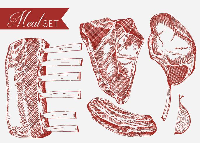 Veal Set Hand Drawn Vector