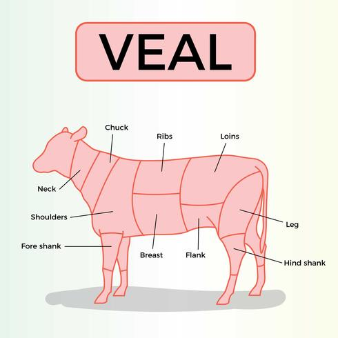 Gratis kalvköttvektor