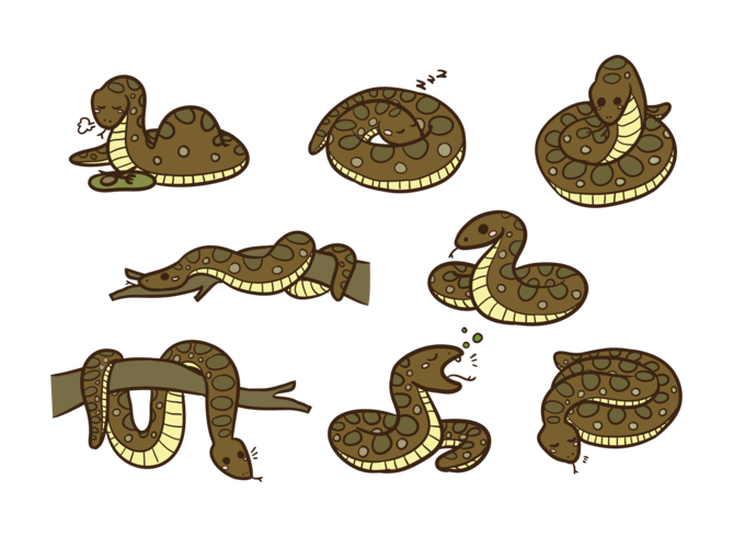 Anaconda Cartoon Vector
