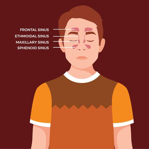 Free vector sinusitis male character