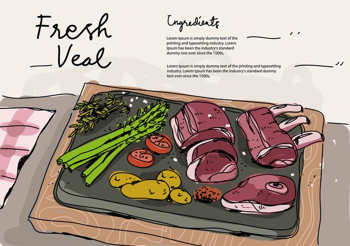 Fresh Veal Ingredients Hand Drawn Vector Illustration