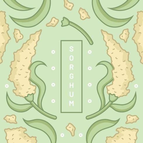 Vecteur de grain de sorgho