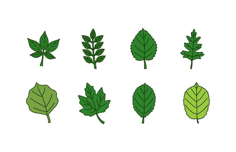 Blätter-Icon-Set
