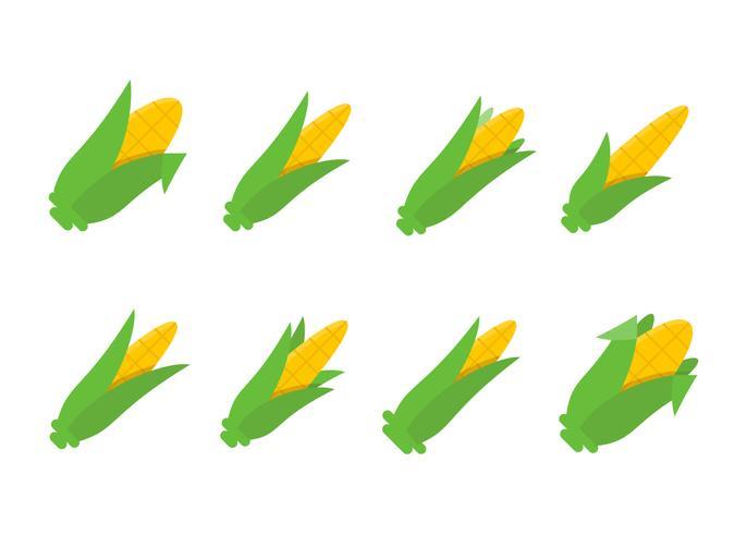 Vectores de tallos de maíz excepcional gratis