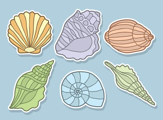Colored Scallops Vector