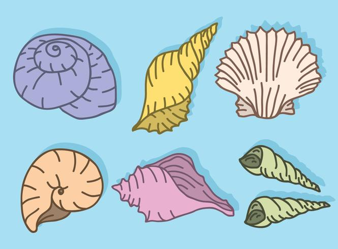 Scallops Collection On Blue Vector