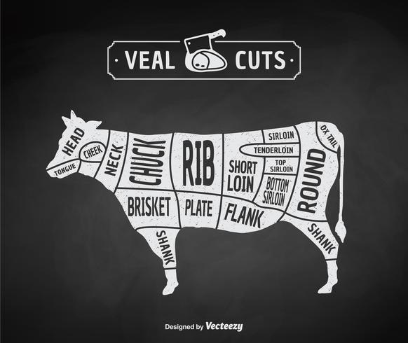 Vintage Butcher Cuts Of Veal Or Beef Diagram Vector