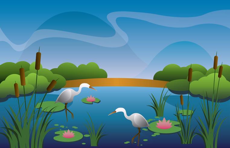 Belo pântano