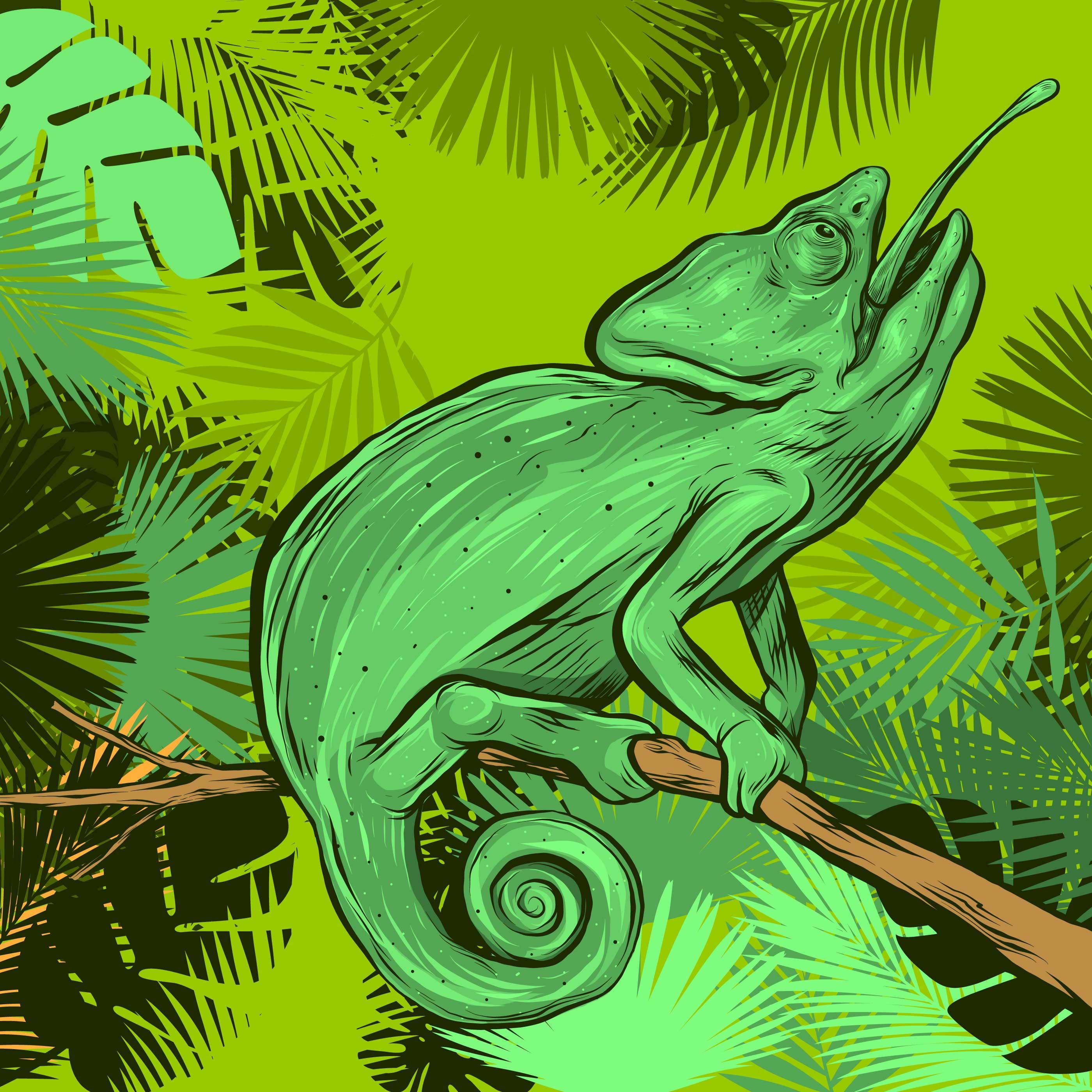chameleon on a branch of tropical leaves frame download