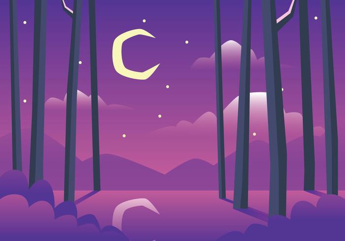 Bayou Illustration På Natt