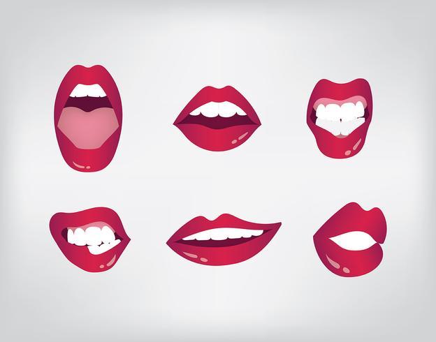 set vettoriale di boca
