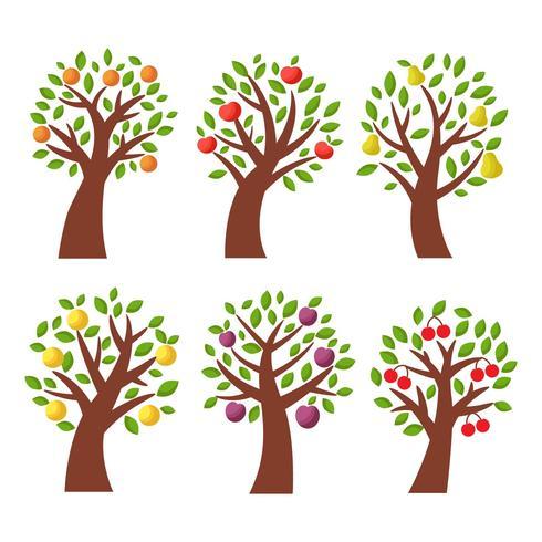 Free Fruits ( Apple, Peach, Pear ) Tree Vector