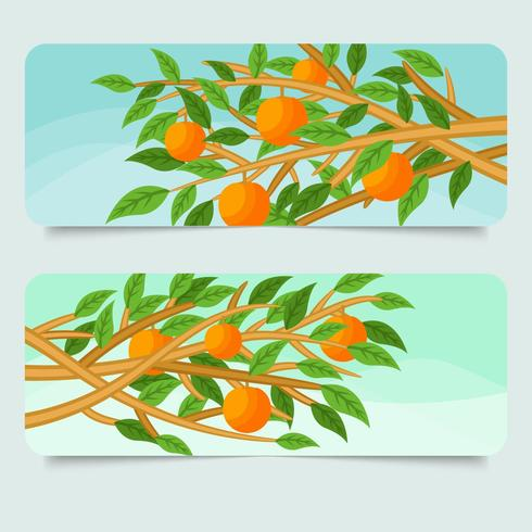 Peach Tree Banner Vector