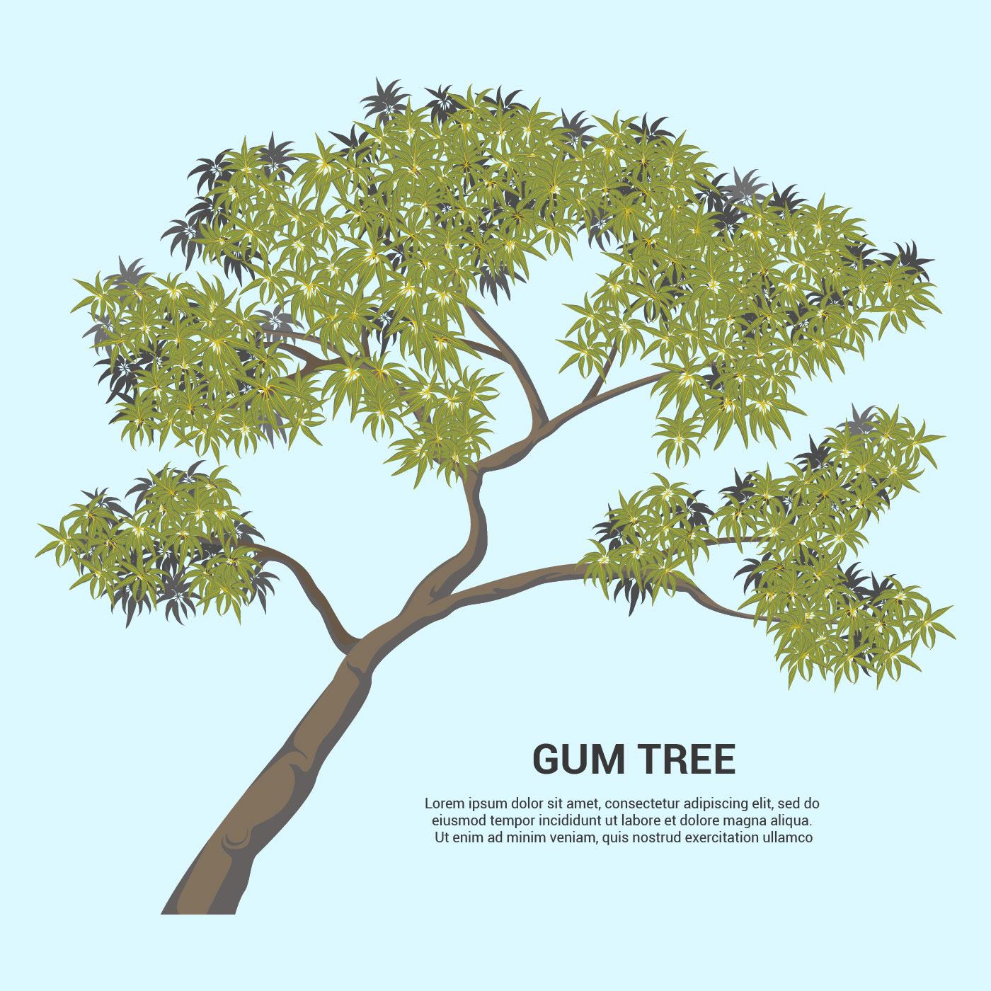 Vector Illustration Tree: Gum Tree Vector Illustration