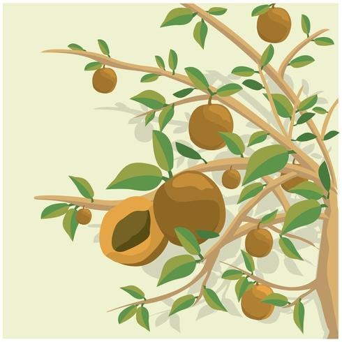 Fundo da ilustração da árvore do pêssego
