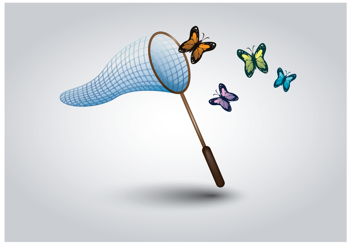 Free Butterfly Net Vector