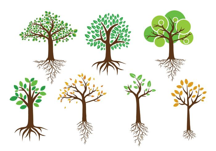 Árbol verde con vectores de raíces
