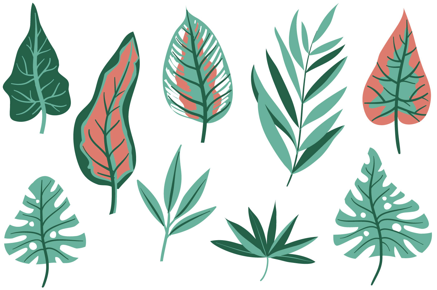 tropical leaves free vector art 14448 free downloads