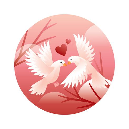 Dove Couple In Love Vector