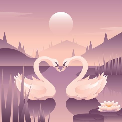 Vector de amor de cisnes