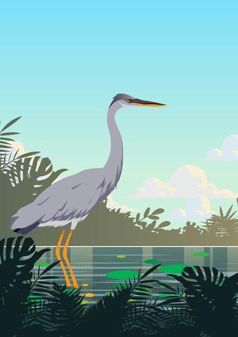 marshfågel