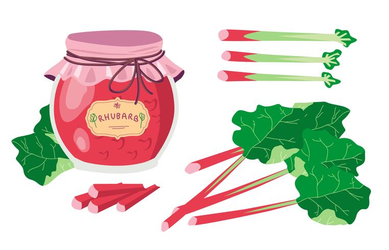 Rhubarb Flat Vector Illustration