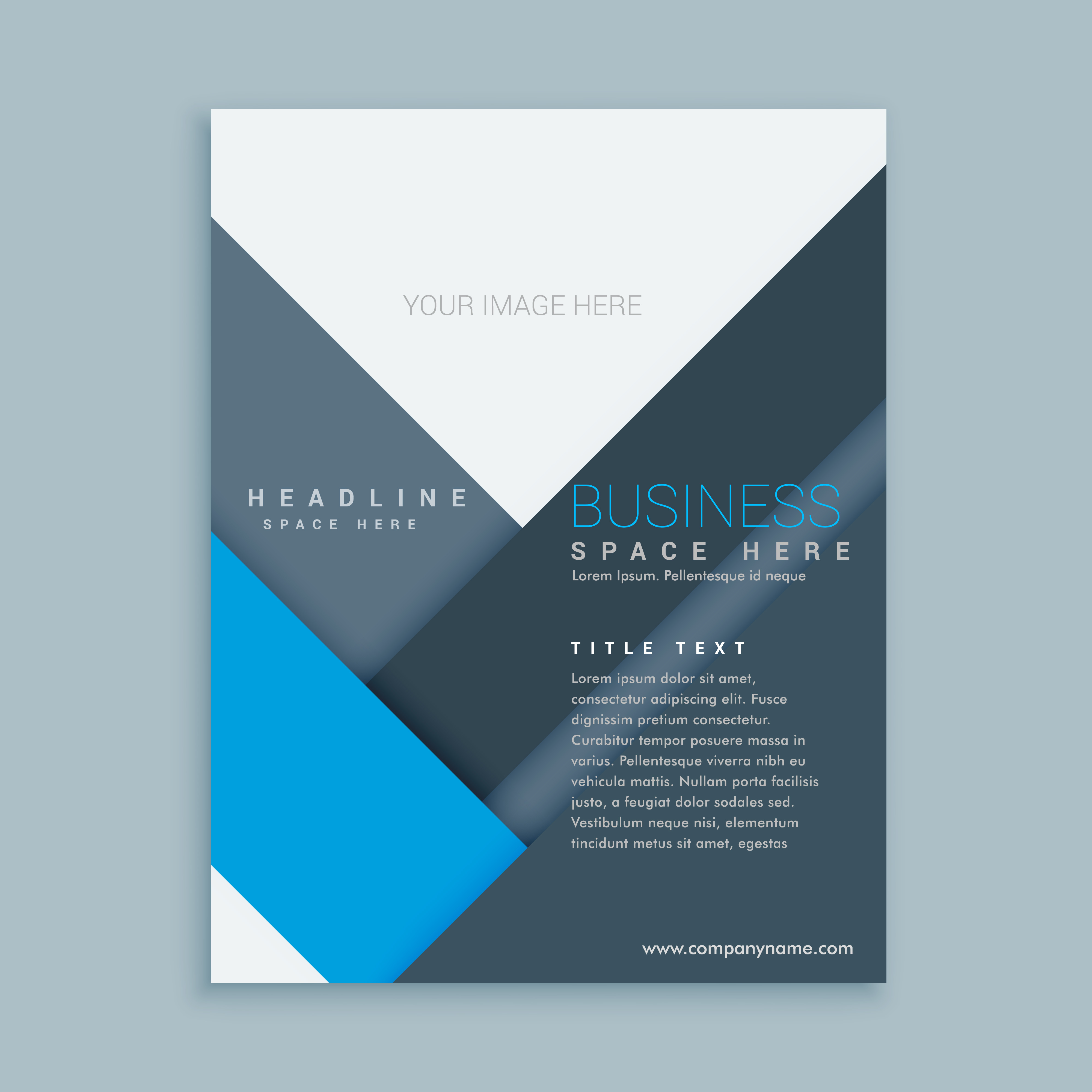 company brochure template - company brochure template in minimal shapes download