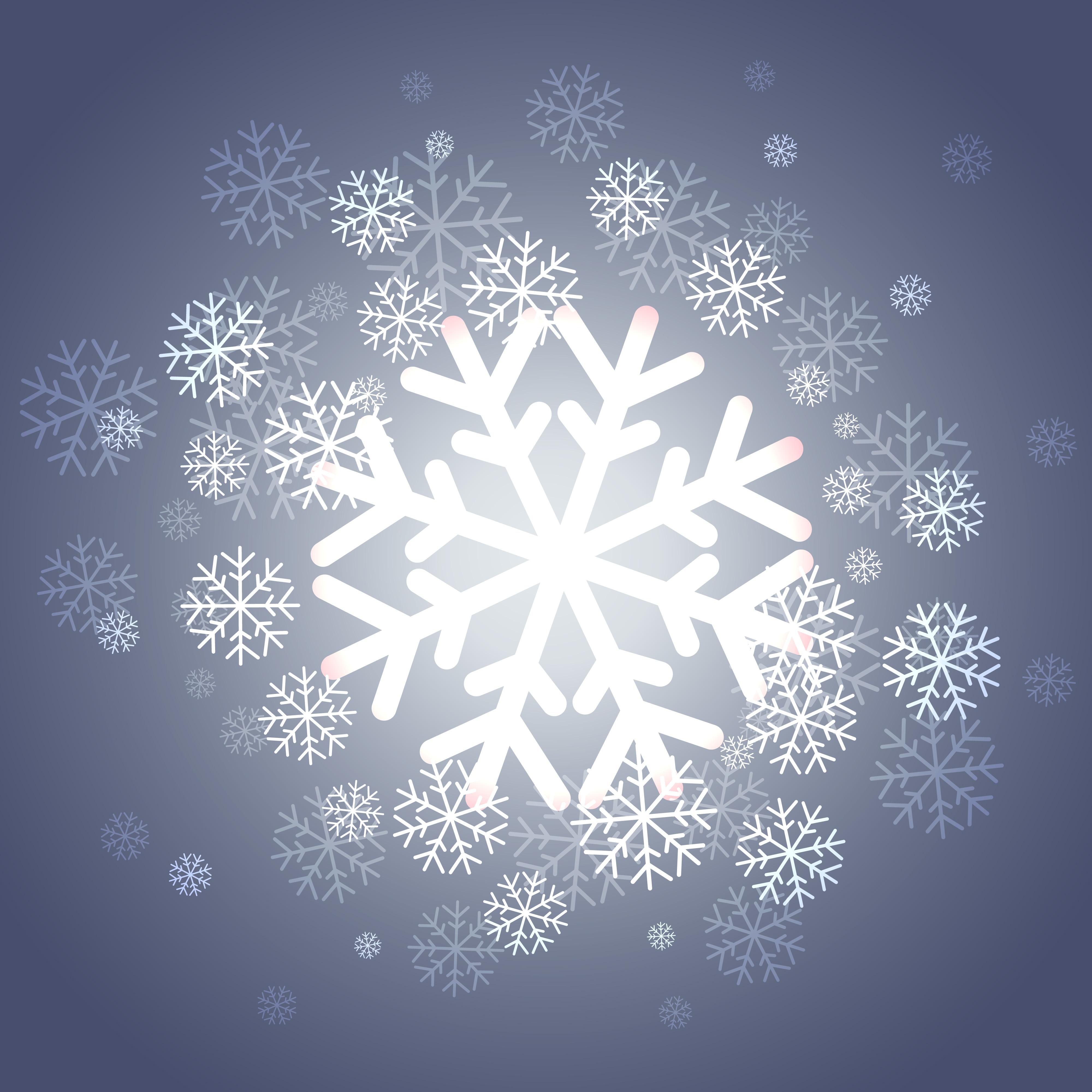 shiny christmas snowflakes