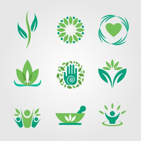 Green and Healing Logo Vector
