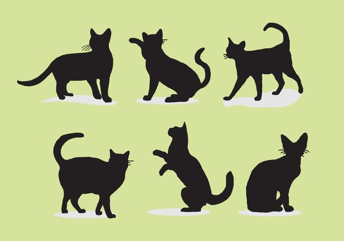 Illustration vectorielle de chat siluetas