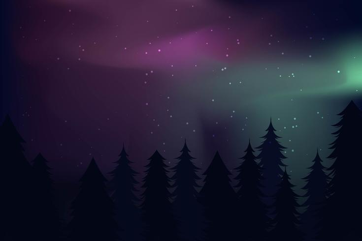 Northern Lights Landscape Vectors