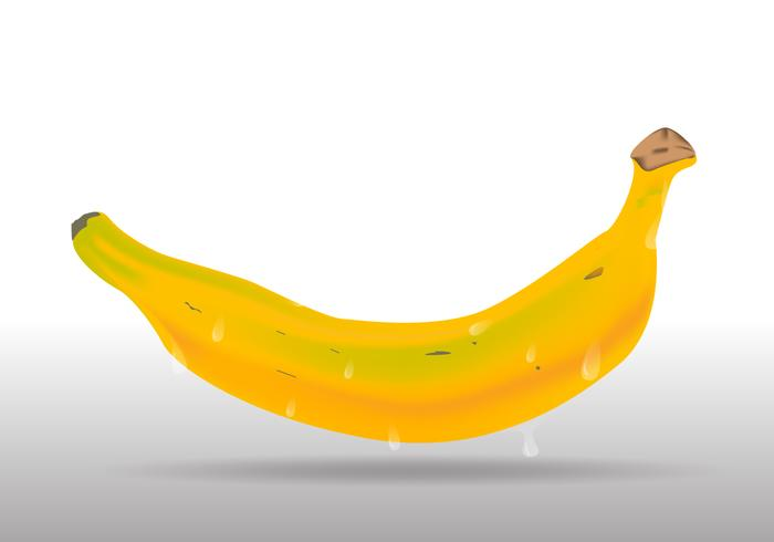 Realistic Yellow Plantain