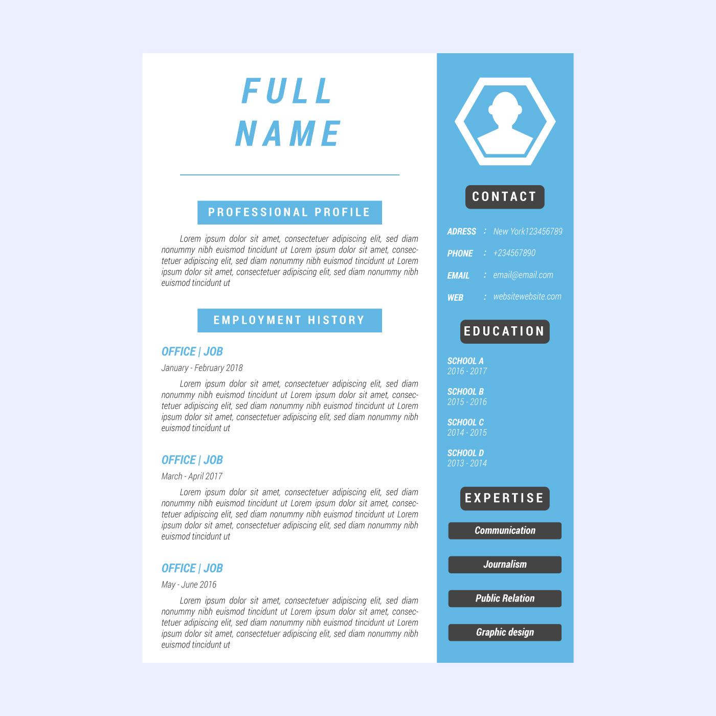 iconic corporate resume vectors