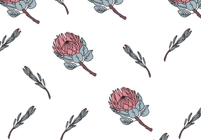 Protea Pattern vector