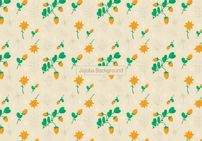 Jojoba Background