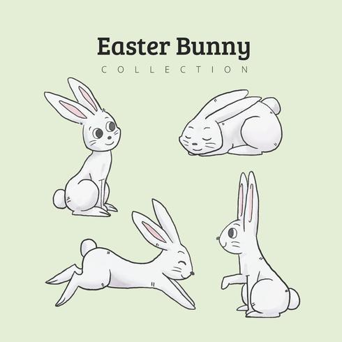 Cute Bunny Charakter Sammlung