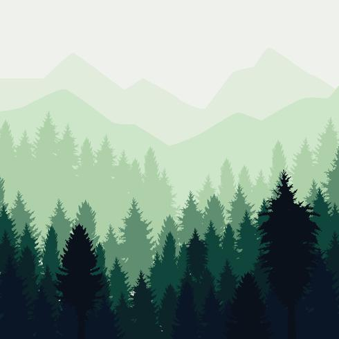 Abstract Forest Landscape